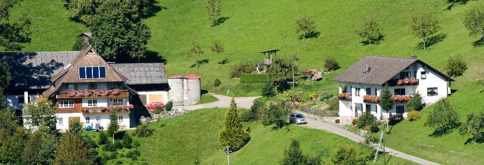 Langgrabenhof Ferienwohnung In Zell Am Harmersbach Oberentersbach